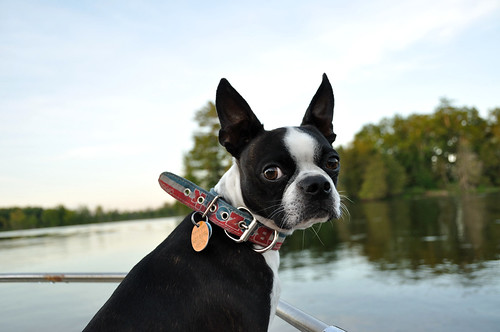 Leroy's first boat ride!