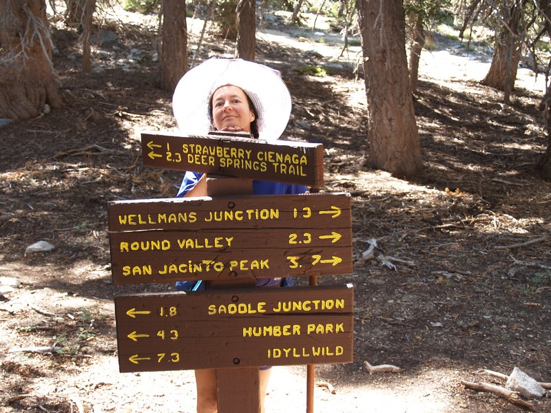 Pacific Crest Trail junction with the Wellman Divide Trail