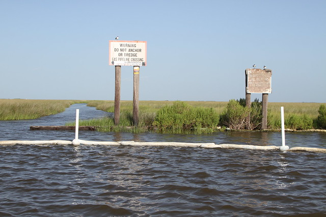 pipeline canals dissect louisiana's marsh