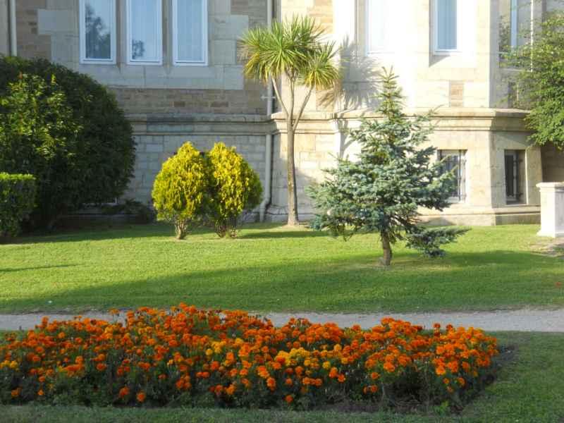 Jardines del Palacio de la Magdalena 3