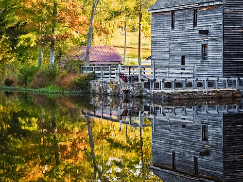 autumn fallcolor © raleighnc sigma1850mmf28 yatesmill garyburke olympuse420