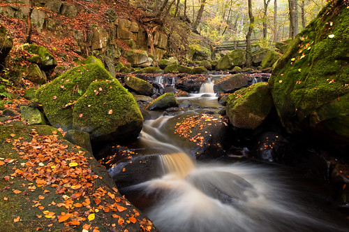 longexposure autumn england orange motion color colour green english fall water leaves river landscape photography countryside movement october derbyshire wideangle british brook peaks tamron autumnal 1024 grindleford padleygorge peakdisctrict leadin