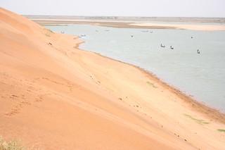 Dune Rose, Mali