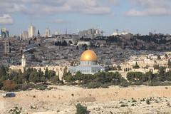 Israel WHS