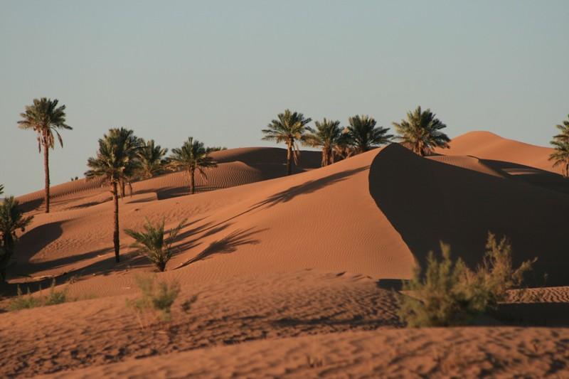 Photos Of Sahara Safari Camp Sahara Safari Camp
