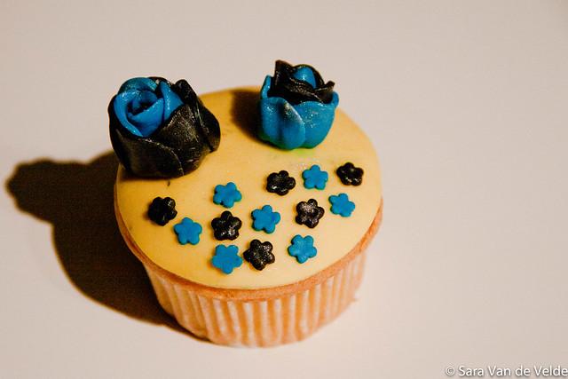 20111120-Cupcake