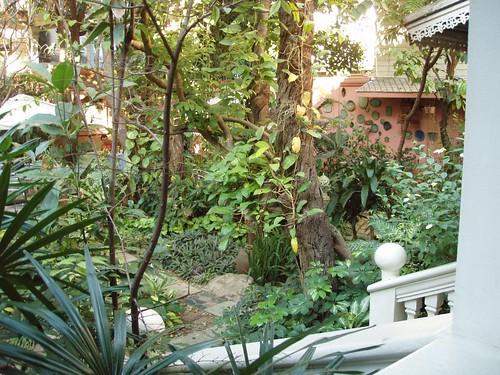 201201210103_tea-garden