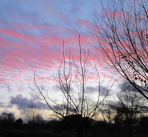 thames sunrise river dawn
