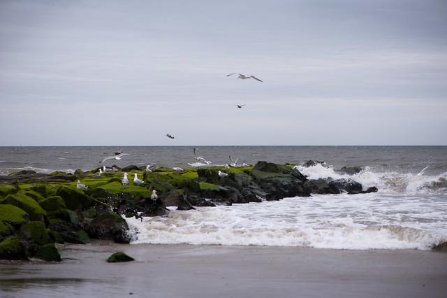 035 beach