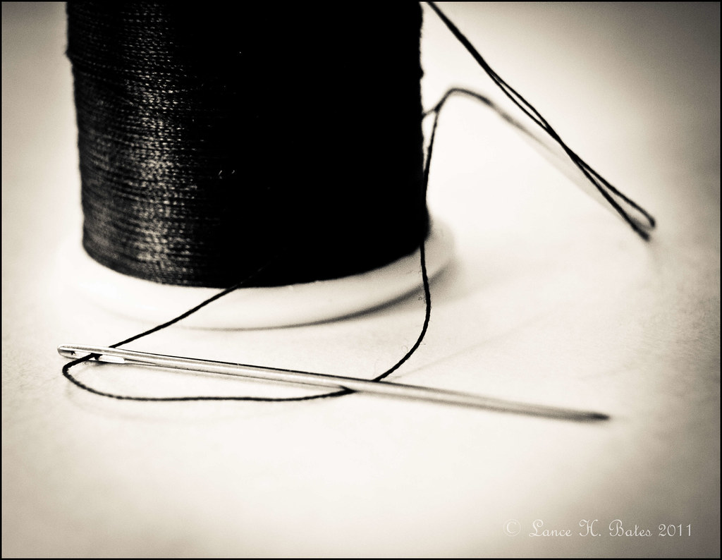 20111014 Needle and thread
