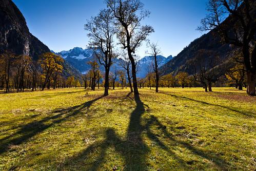 mountains tree robert austria tirol österreich herbst himmel berge bäume baum tyrol ahornboden abigfave vollformat mehlan ef1740mm14l canon5dmkii robertmehlan