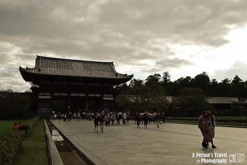 2011Kyoto_Japan_ChapTwelve_3