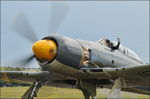 Flying Legends 2011 - Hawker Sea Fury