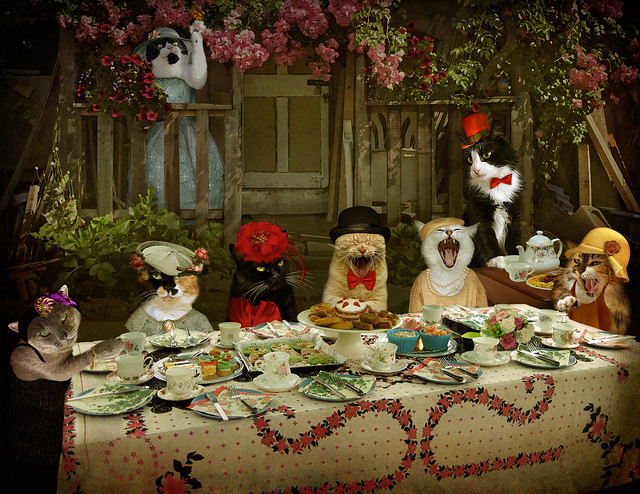 Mad Catter Tea Party (Revd) - enter Miss Poppy! (story below)