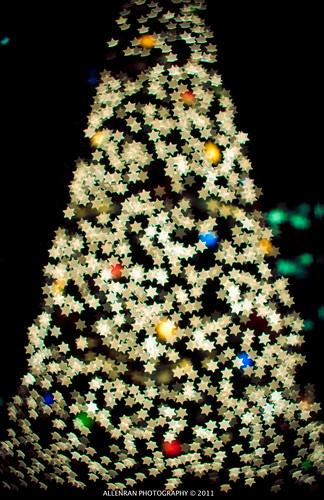 Star chrismas tree