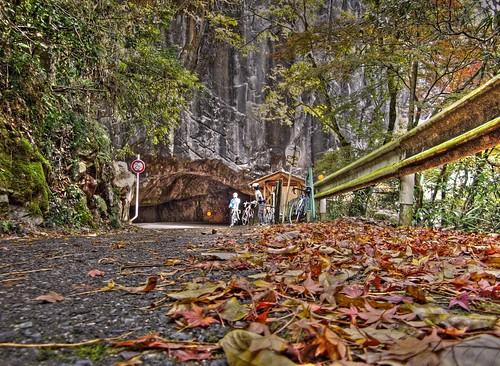 羽山第二隧道 #8
