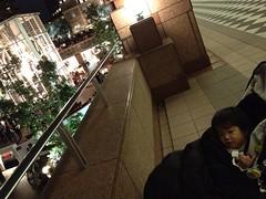 YGPとらちゃん(2011/11/20)