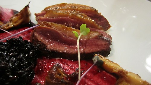 Duck with black rice and huckleberry sauce, Journeyman, Somerville