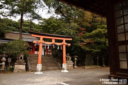 2011Kyoto_Japan_ChapTen_15