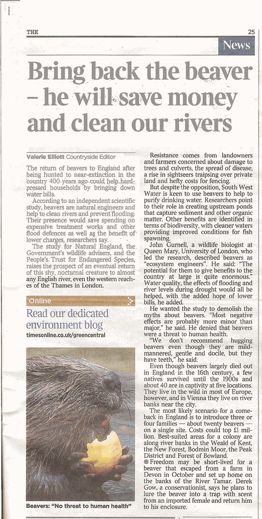 Bring back the beaver