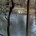 view of the clackamas river from a house for sale    MG 2925