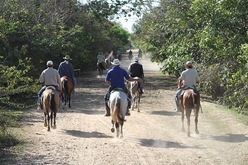 Los Llanos (Venezuela)