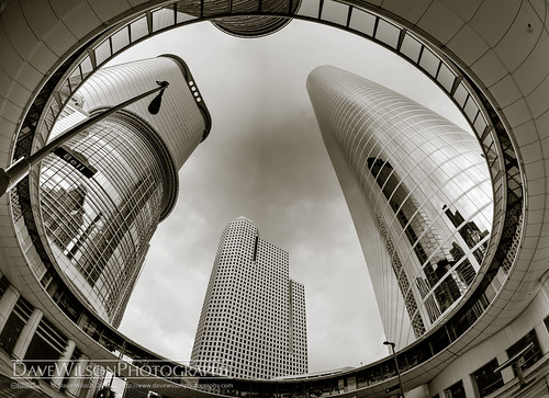 monochrome architecture buildings downtown texas skyscrapers tx houston smith skywalk belll