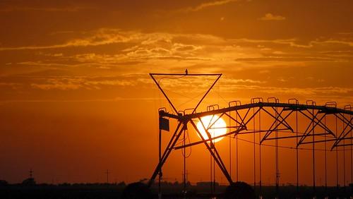 sunset orange clouds texas beltofvenus lubbock pumpjack pivotirrigation