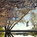 Perception by David Parks - davidparksphotography.com