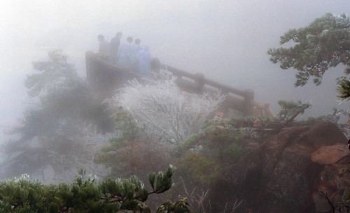 7907 Heavy mist in Huangshan-- Anhui Province , China