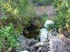 Sentier Capeddu-Sari : la source 300m après Capeddu