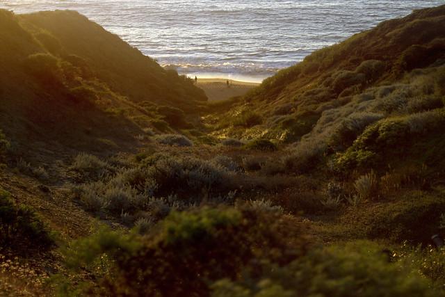 China Beach POV The Presidio, San Francisco.  October 7, 2011
