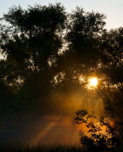 morning trees ohio summer sun silhouette us oh sunrises stow
