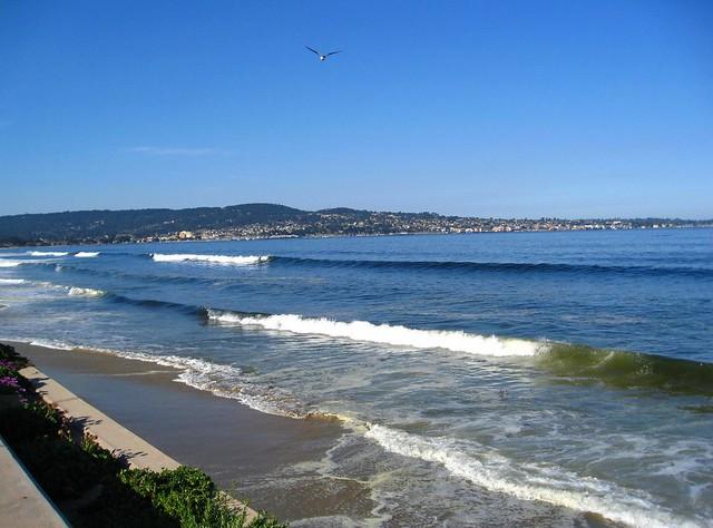 8 30 am best western beach resort monterey ca for Best beach in monterey ca