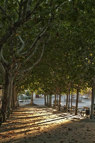 ocaso en otoño