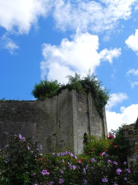 Caf Canton De Vaud Pour Complement Francais