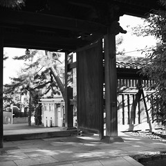 Photo:Rolleiflex_Ota_20111101_06 By Jun Takeuchi
