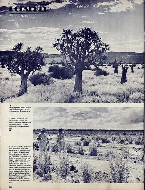 Panorama, nº8, Junho 1975 - 25