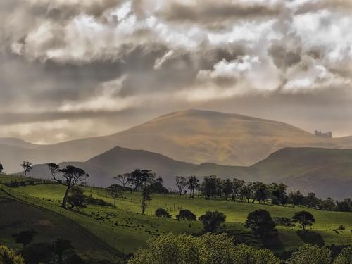 trees sunlight rain clouds bravo day hills nz otago after karetane