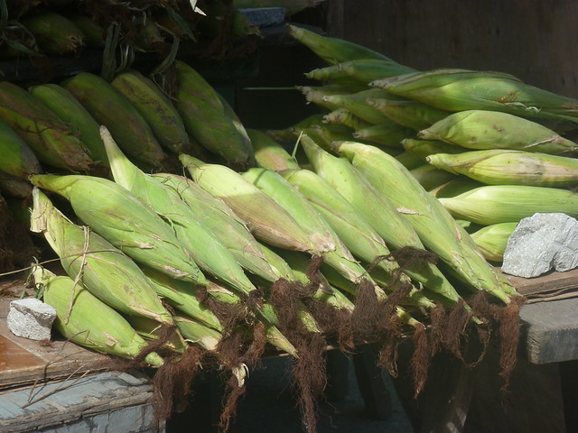 corn - oh my buhay