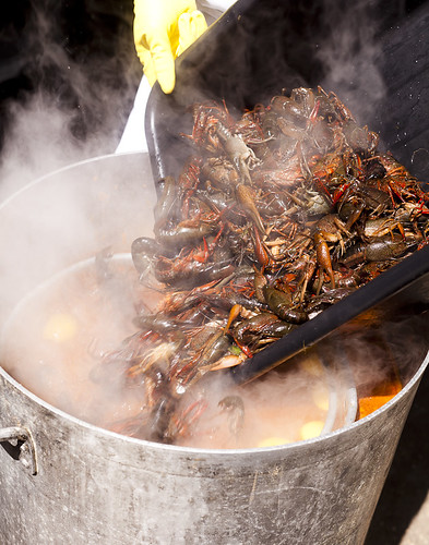 Crawdad Boil at MRB - New Orleans, Louisiana