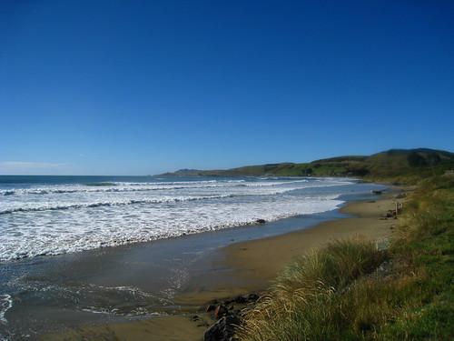 newzealand nz southisland kakapoint