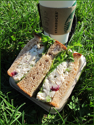 Sandwich by the lake