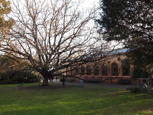 Observatory, Melbourne