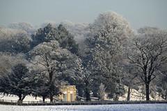 Robert's Park in Winter 2010