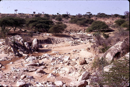 tanzania erosion boulders acacia soilerosion dryvalley kondoa dodoma dragondaggerphoto soilerosiontanzania soilerosiondodomaregion