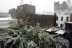 October 29, 2011 -- Snowstorm