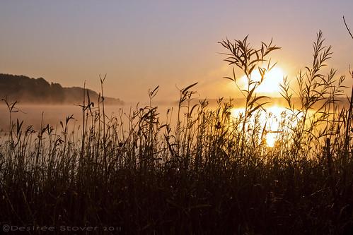 mist fog bells sunrise jordanlake
