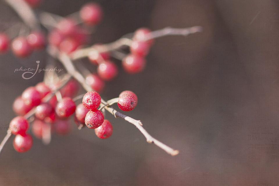 berried
