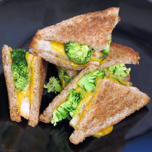 Double-decker broccoli and cheddar grilled cheese on wheat by Coyoty